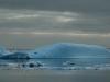Antarctica Iceberg - Blue Whale