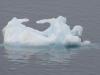 Antarctica Iceberg - dwarves dinner