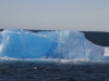 Antarctica Iceberg - Silly