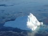 Antarctica Iceberg - Church