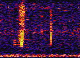 bloop sound, mysterious bllop sound, the bloop sound, unexplained deep sea sound bloop, bloop unexplained deep oceant sound, what is the bloop, what is the bloop sound, unexplained and mysterious bloop sound, bloop noise