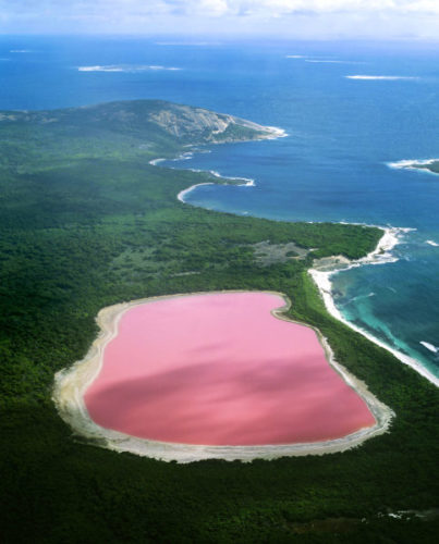 Pink Lake Hillier, why is lake hillier pink?, Pink Lake Hillier photo, Pink Lake Hillier pictures, Pink Lake Hillier pics, Pink Lake Hillier video, video of Pink Lake Hillier, video youtube Pink Lake Hillier, strange lakes australia, Pink Lake Hillier australia pics and video, Picture of The Pink Lake Hillier, Western Australia, The pink Lake Hiller lake in Western Australia. Its pink color remains a unsolved mystery.