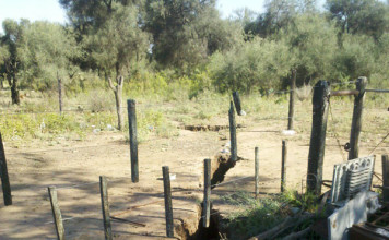 argentina, ground crack, soil crack geology crack, earthquake, heavy rains, washing