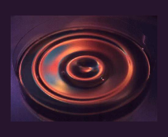 liquid gravity waves