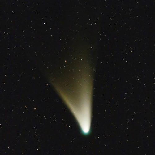 Comet Panstarrs will be visible in the Northern Hemisphere start of March 2013