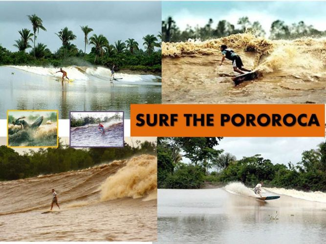 surf the pororoca in Brazil