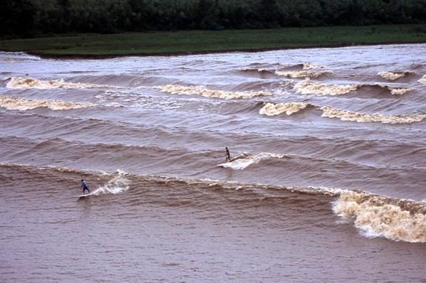 surfer dream: amazona's pororoca wave brazil
