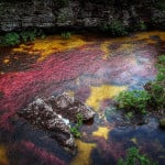 Cano-Cristales_3_Otherworldly-places