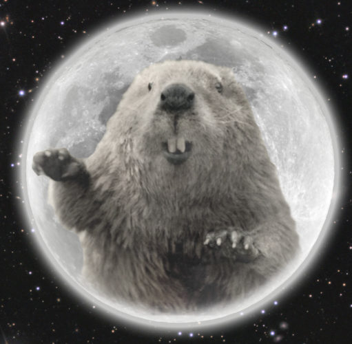 full bearver moon is the full moon in november