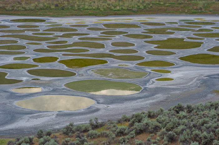 spotted lake bc canada green and yellow deposits, sacred places: discover spotted lake in okanagan BC, spotted lake, spotted lake BC, spotted lake BC Canada, mysteirous lake candan, mysterious spotted lake BC, mysterious lake BC, coloredlake bc, sacred lake BC: spotted lake, spotted lake evaporite lake with different colors, visit bc spotted lake, discover spotted lake bc canada, visit mysterious bc: spotted lake okanagan healing and sacred lake, The spotted lake is thought to contain healing waters