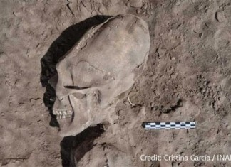 alien skulls mexico, elongated skulls mexico, elongated alien skulls mexico, alien skulls el cemeterio, Alien Skulls Found In El Cementerio mexico, skull deformation mexico, alien skull deformation mexico