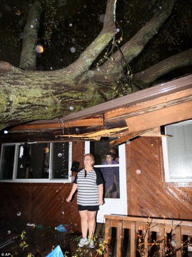 fallen trees during vanbury county arkansas tornado april 2013