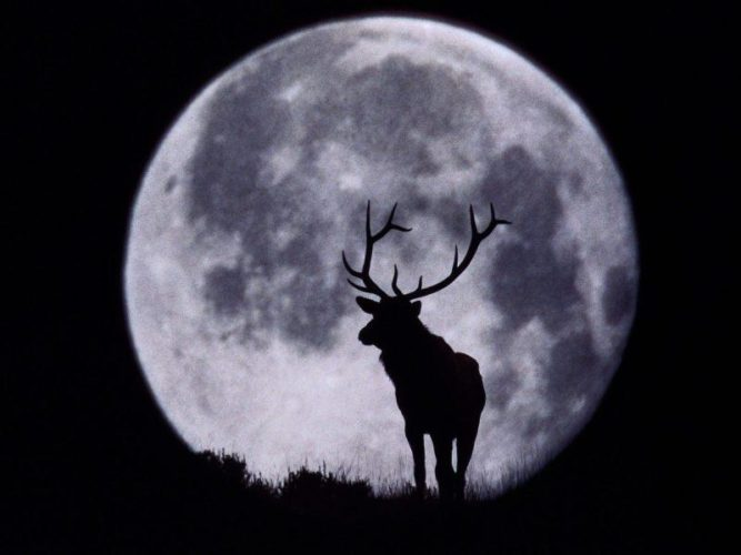 full moon buck is the full moon in July