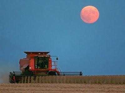 full moon harvest is the full moon of september