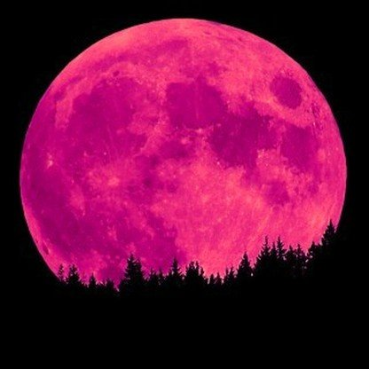 full moon pink is the full moon of april