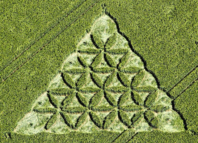 Sacred geometry in crop circles, Sacred geometry crop circles, Sacred geometry crop circles photos, photo of Sacred geometry crop circles, crop circles photo