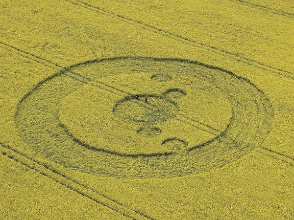 Sacred geometry in crop circles, Sacred geometry crop circles, Sacred geometry crop circles photos, photo of Sacred geometry crop circles, crop circles photo
