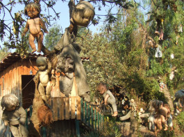 Island of dolls, Island of dolls photo gallery, weird things to visit in mexico, Island of dolls video and photos, visit Island of dolls in Mexico, Island of dolls photo, hanging dolls on Island of dolls, creepy Island of dolls mexico, mexico Island of dolls photo, Island of dolls video, visit weird places, discover strange places around the world, strange and magic places in Mexico, discover strange places in mexico, discover strange things in the world, weird destination in mexico: Island of dolls, discover island of gods mexico, visit island of dolls in mexico, open your weird side, Some of these dolls hanging all around on the Island of Dolls near Mexico city. Scary!