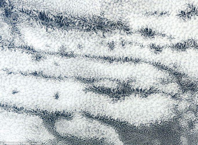 Actinoform clouds