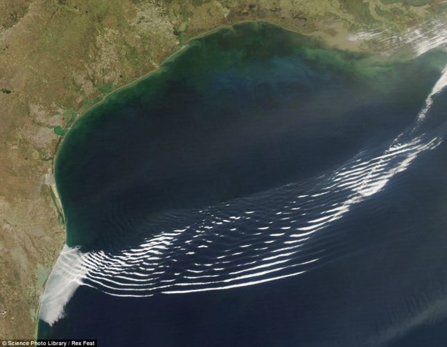 Gravity wave clouds over the Gulf of Mexico