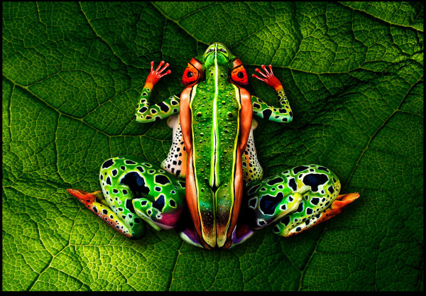 body painting art: The frog by Johannes Stoetter