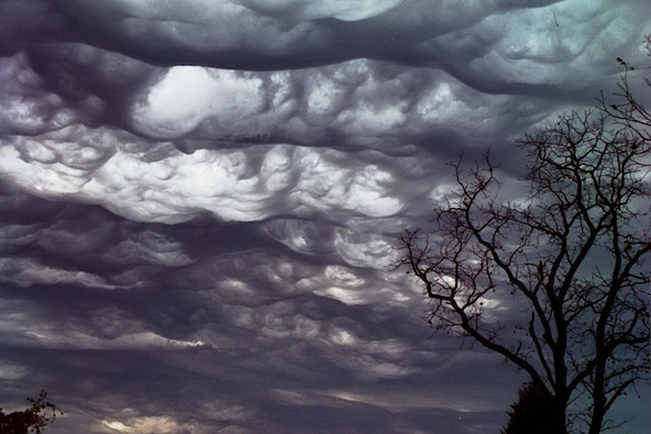 asperatus cloud formation