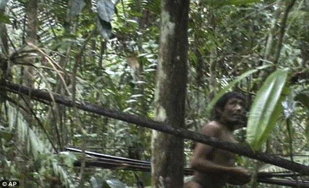 rare footage of Kawahiva living in Brazil's Amazon jungle, video kawahiva brazil, rare indigenous amazon tribe video