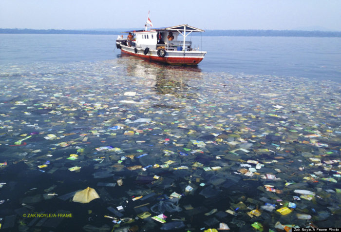sea pollution in indonesia: Trash Slick , fight against sea and ocean pollution and trash, surfing indonesia, Discover Untung Jawa also known as