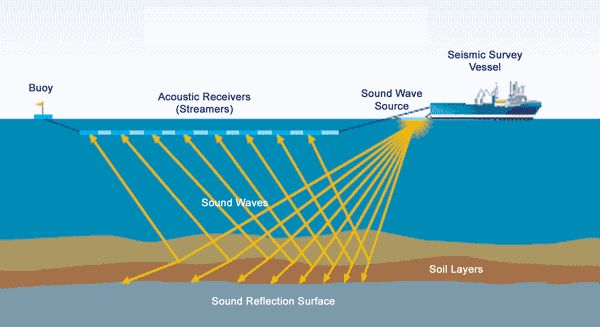 air guns seismic surveys off coratian coast september 2013