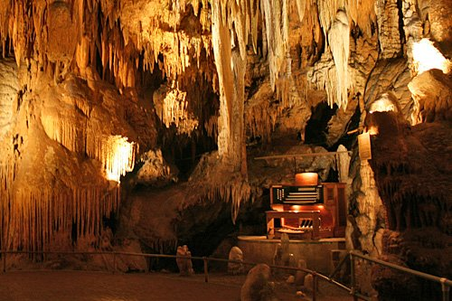 The Great Stalacpipe Organ, The Great Stalacpipe Organ in the Luray Caverns, The Great Stalacpipe Organ is the largest mucical instrument in the world, The Great Stalacpipe Organ in the Luray Caverns virginia, The Great Stalacpipe Organ in the Luray Caverns musical oddity, Musical Oddity: Discover The Great Stalacpipe Organ Deep Within The Luray Caverns in Virginia, The Great Stalacpipe Organ in Luray Caverns Virginia, The Great Stalacpipe Organ music video,, The Great Stalacpipe Organ concert, The Great Stalacpipe Organ music, The Great Stalacpipe Organ photo, The Great Stalacpipe Organ, Sound of Stalacpipe Organ, Luray Caverns, Virginia, musical oddity, strange sounds from nature, The Great Stalacpipe Organ, Luray caverns, virginia, luray caverns organ, organ pipes in luray caverns, sound oddity, strange sounds, strange music, strange stalactite music, music from nature, music from rocks, music from stalatite, discover The Great Stalacpipe Organ in Luray Caverns Virginia, amazing lithophone in virginia, the largest natural musical instrument in the world: The Great Stalacpipe Organ in Luray Caverns Virginia, the largest natural musical instrument in the world: The Great Stalacpipe Organ, largest organ in the world, weird musical instrument, odd music instrument, strange organ in cave, cave music virginia, cave music concert in virginia, strange music instrument, strange things in the world, discover amazing things in the world, early lithophone performances in Luray Caverns, This postcard from 1906 illustrates the method of early lithophone performances in Luray Caverns, Virginia, United States, strange musical oddity, strange music in cave, amazing nature phenomenon, ghost sounds in a cave,The Great Stalacpipe Organ is the largest mucical instrument in the world and is found deep within The Luray Caverns in Virginia. An amazing musical oddity!