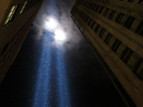 birds in the tribute of light memorial in new york, birds in the tribute of light memorial video, video birds, tribute of life, tribute of life NY, NY tribute of light birds video, tribute of light NY birds, NY birds tribute of light, birds attracted by tribute of light memorial, september 11 2013 tribute of light, september 11 2013 birds in tribute of light, nature commemoration NY brids, 9/11 commemoration NY, 9/11 commemoration NY birds in tribute of light memorial, eerie footage of birds in tribute of light memorial on september 11 2013, september 11 2013 nature tribute