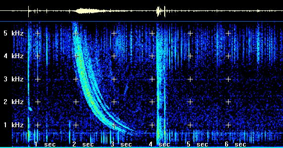 Natural VLF Radio, Natural Radio, Natural VLF Radio_Natural Radio, NATURAL VLF RADIO video, Sample Natural Radio Signals, sferics, tweeks, whistlers, natural radio sound of spaceweather VFL