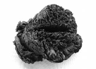 oldest brain, 4000 year-old brain, mysterious old brain, mystery around 4000 year-old brain, how can brain preserve long? 400 years old brain, 4000 brain, 4000 year-old brain found in Turkey, archeology, archeology news: 4000 years old brain in Seyitömer Höyük, Seyitömer Höyük brain, Seyitömer Höyük old brain, turkey old brain