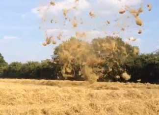 Hay tornado, straw tornado, mini twister, tornado Hampshire farm, mini tornado dummer, dummer Hampshire mini tornado, vortex straw dummer, dummer tornado 2013, dummer mini tornado 2013