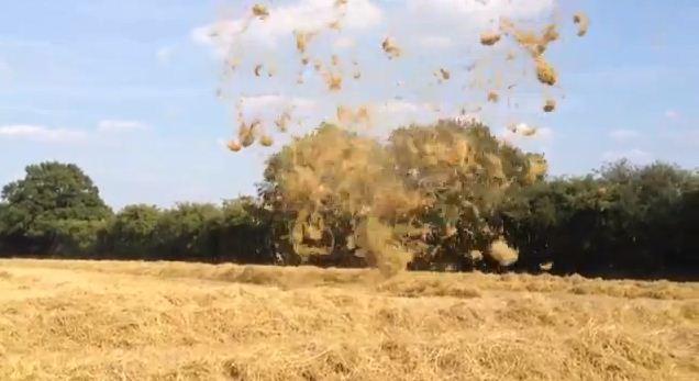 Hay tornado, straw tornado, mini twister, tornado Hampshire farm, Hay or straw 'tornado' whips through Dummer in Hampshire, mini tornado dummer, dummer Hampshire mini tornado, vortex straw dummer, dummer tornado 2013, dummer mini tornado 2013