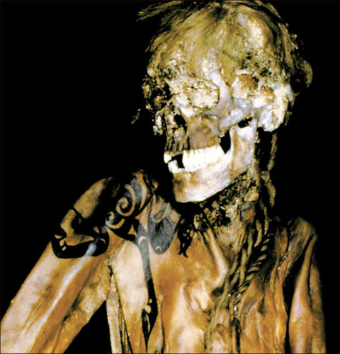 The Siberian Ice Maiden, the Princess of Ukok, the Altai Princess, Ochy-bala, the mysterious tattooed siberian mummy