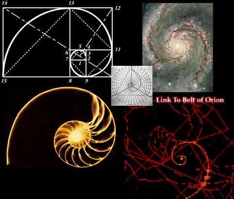 golden ratio, fibonacci spiral,golden ratio fibonacci spiral in nature