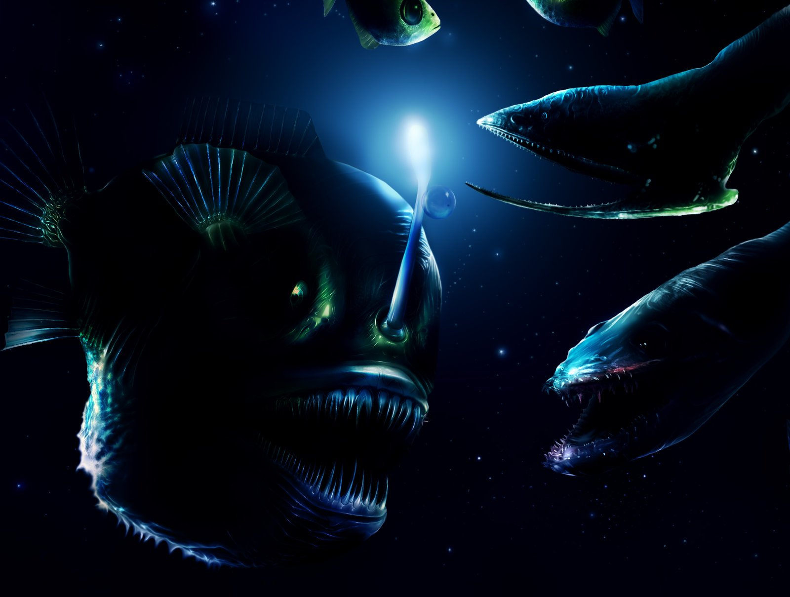 Are unknown mysterious deep sea monsters still to be