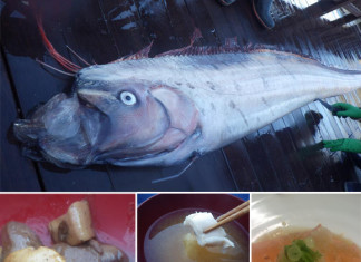 oarfish, oarfish stranding, oarfish stranding 2014, oarfish washes up in Taiwan January 2014, oarfish washes up in China January 2014, oarfish stranding reports 2014, 2014 oarfish sightings, oarfish stranding reports january 2014, oarfish also strand in Asia, oarfish stranding asia 2014, sea monster, japanese eats oarfish