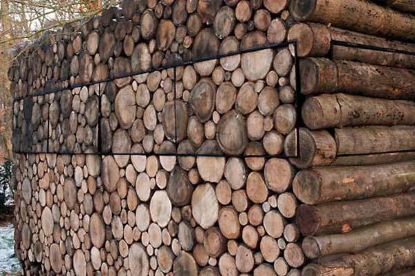 log house, log house thomas mayer, log house architecture, log house photo, photo of log cabin by thomas Mayer, Thomas Mayer log house photo
