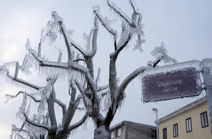 ice Slovenia 2014, weather anomaly: ice Slovenia 2014 photo, weather anomaly: ice Slovenia 2014 video, Ice storm in Slovenia - February 2014, Ice storm in Slovenia - February 2014. Photo: Liveleak