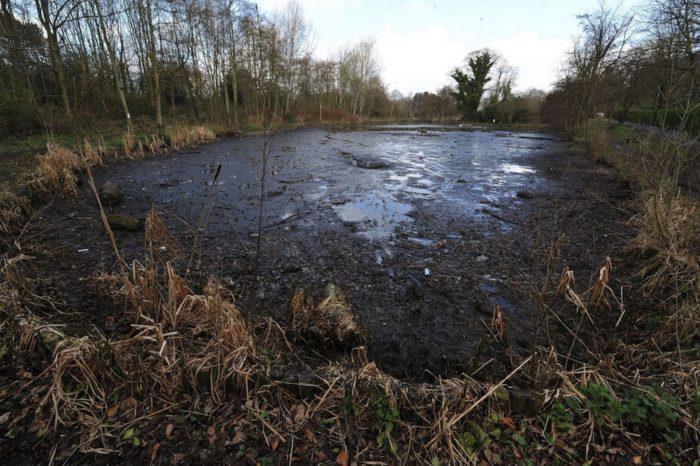 Stockport Park sinkhole, uk sinkhole drains pond in Stockport park, Stockport Park sinkhole drains pond, Stockport Park sinkhole drains pond on March 20 2014