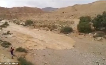 Re-birth of River Zin video, river Zin re-birth video, the zin river in Negey desert in Israel is reborn video, Israel river zin re-birth, a river in Israel desert is reborn, river zin in israel dersert Negev is reborn, new river in Israel desert, Re-birth of River Zin in the Negev Desert in Israel. Photo: Youtube