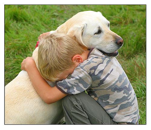 Σκύλος σώζει τον άνθρωπο από το να σκοτωθεί από τεράστιο ταύρο, ο σκύλος σώζει ταυρομάχος από το να σκοτωθεί από ένα ταύρο, τον ταύρο και ο σκύλος βίντεο αγώνα, torero βίντεο, torero να σκοτωθεί από ένα βίντεο ταύρο, ο σκύλος σώζει τον άνθρωπο στο corida, ο σκύλος σώζει torero, torero σωθεί από θάνατο από το σκυλί, το σκυλί σώζει βίντεο άνθρωπο, βίντεο κάνουν εξοικονόμηση ταυρομάχος κατά ταυρομαχία, βίντεο σκύλο, καταπληκτικό βίντεο σκυλιών, το σκυλί σώζει torero ζωή βίντεο, το βίντεο της διάσωσης σκύλου ζωής torero, τα σκυλιά είναι ο καλύτερος φίλος των ανδρών, τα σκυλιά είναι ο καλύτερος φίλος των ανδρών.  Φωτογραφία: Περιβαλλοντικής Γεωγραφίας