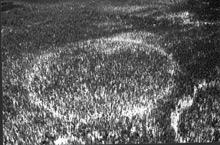 strange phenomenon: mysterious forest ring canada, strange earth pheonemon: mysterious forest ring canada, mysterious forest ring canada, strange phenomenon: mysterious forest ring canada