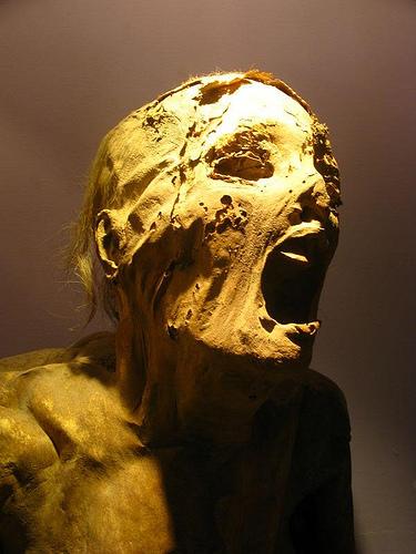 strange screaming mummy photo, mysterious screaming mummy photo, strange screaming mummy, mysterious screaming mummy, weird screaming mummy, strange egyptian screaming mummy, screaming mummy, Another example of screaming mummy. Photo: Flickr, Screaming mummy, Screaming mummy photo, Screaming mummies mystery, Screaming mummies mystery video and photos, Screaming mummy video, Screaming mummies, Screaming mummies mystery video and photos