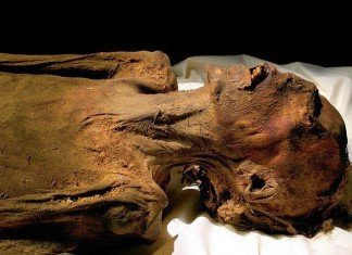 unknown terrifying screaming egyptian mummy, screaming mummy, screaming mummies, terrifying screaming mummy, terrifying screaming mummies, Terrifying screaming mummy: The contorted features of Unknown Man E have inspired imaginative speculations and conspiracies for over a century. Photo: National Geographic Society