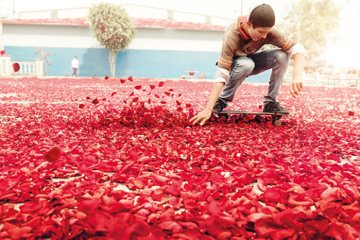 Imagine skateboarding in flowers after a volcanic eruption! Wow! by Nick Meek, flowers instead of lava volcano, volcano erupts flowers, flowers spewed by volcanic eruption in new sony ad