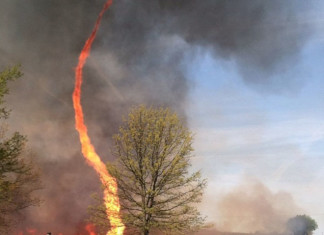 This fire tornado was captured by Instagram user Janae Copelin near Chillicothe in Missouri on May 3, 2014, Fire twister. Fire tornado. Firenado!, Fire tornado, Fire twister, Fire tornado, Firenado, Fire tornado photo Chillicothe Missouri May 2014, Fire twister photo Chillicothe Missouri May 2014, Fire tornado photo Chillicothe Missouri May 2014, Firenado photo Chillicothe Missouri May 2014, Fire tornado photo may 2014 missouri, Fire twister photo may 2014 missouri, Fire tornado photo may 2014 missouri, Firenado photo may 2014 missouri, Fire tornado photo may 2014, captured near Chillicothe, Missouri on May 3, 2014Fire tornado captured near Chillicothe, Missouri on May 3, 2014, Photo of a fire tornado captured near Chillicothe, Missouri on May 3, 2014