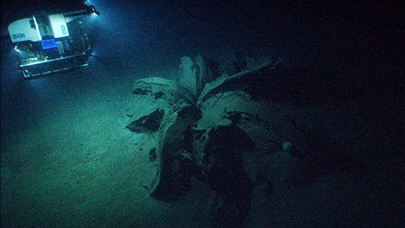 what is an asphalt volcano, first asphalt volcano discovered in the Gulf of Mexico may 2014, asphalt volcano galveston gulf of mexico, asphalt volcano texas may 2014, NOAA Okeanos Explorer Program